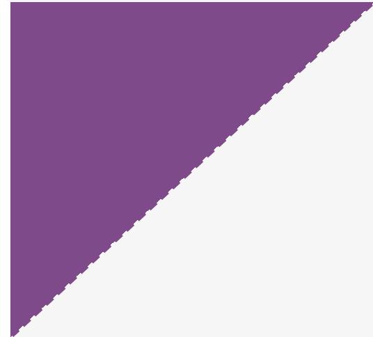 single_product_oblique_purple